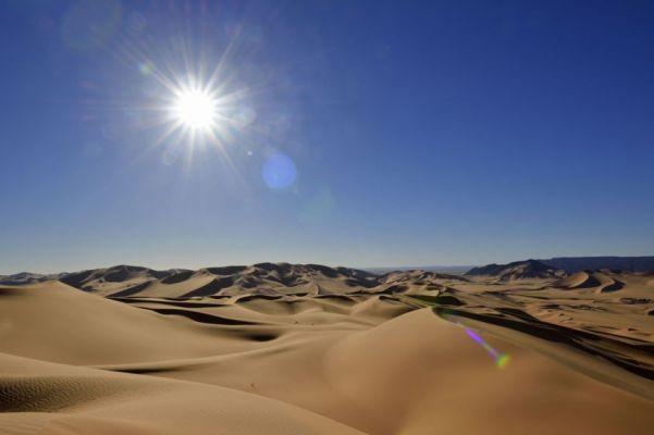 eXtreme-voyaGe.Ru как выжить в пустыне