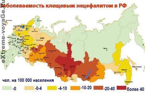 Заражение лесным клещом в России