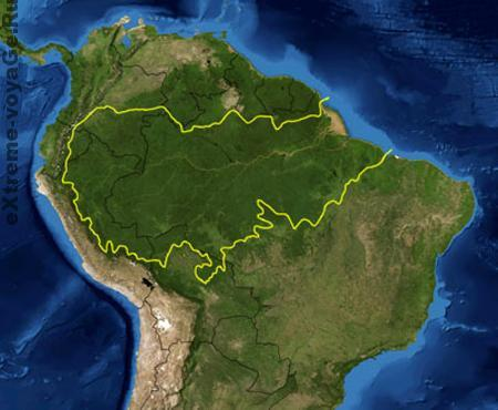 Смотреть: самые опасные животные от National Geographic - Амазония
