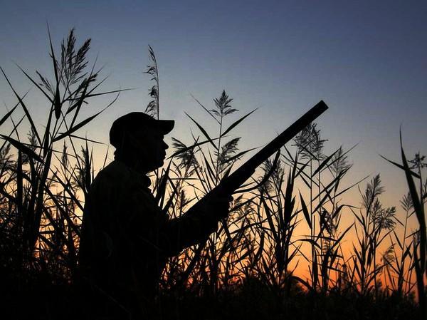 Легальная охота: охотникам упростят правила перевоза оружия внутри Таможенного союза