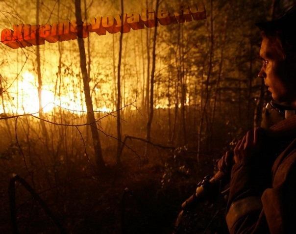 Лесной пожар ночью