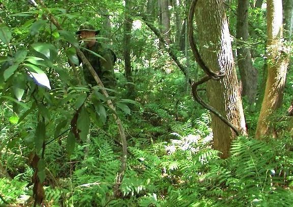 Одежда для тропических джунглей MultiCam Tropic TRU-SPEC Uniform