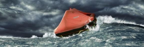 Выживание в море и океане: признаки близости земли