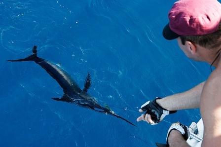 Добыча рыбы в море в экстремальной ситуации