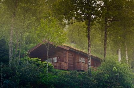 Дом в лесу с маскировочным озеленением на крыше