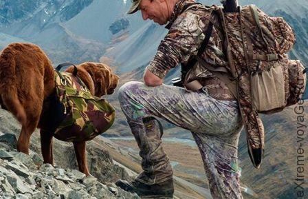 Горные и походные ботинки для охоты Lowa 2015