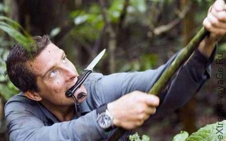 Базовое применение ножа для выживания