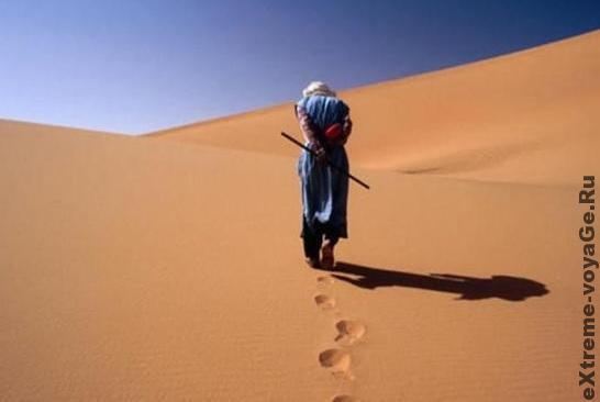 Выживание в пустыне: поиск и добыча воды