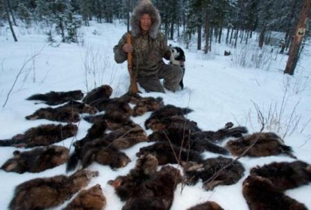 Охотничьи ловушки для выживания: 10 общих правил
