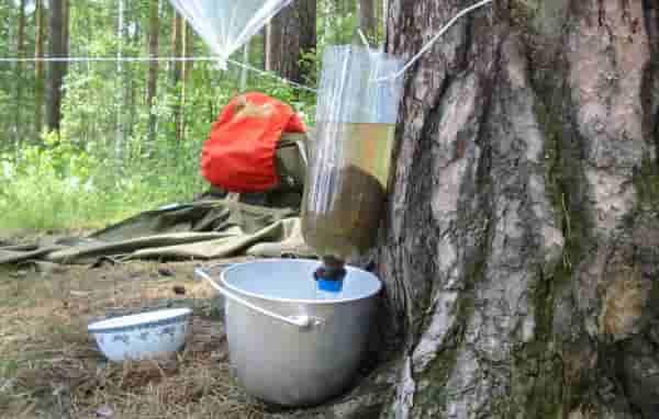 Фильтрация воды в походе
