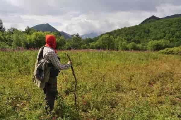 Выживание зависит от условий окружающей среды, настроения и навыков выживальщика