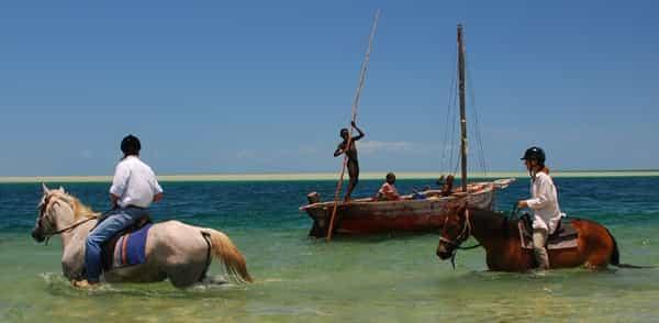Mozambique Horse Safari, или Мозамбикское конное сафари