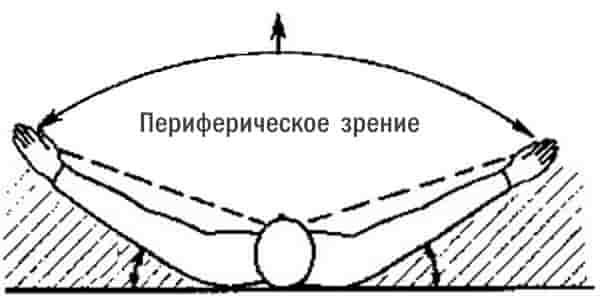 Периферическое зрение для выживания в бою и ЧС