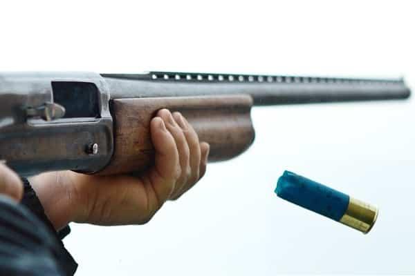 Выбор ружья: основные ошибки и общие правила