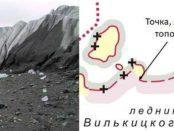 В Арктике наши школьники открыли новый остров Вилькицкий южный